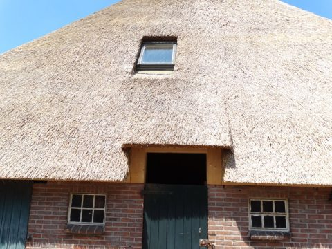 nieuwbouw voor uw rieten dak